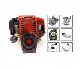 DM0010 Motore Professionale...